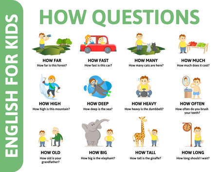 English for kids poster. HOW questions with different chartoon characters. Dictionary card for English language learning. Colorful flat vector illustration.