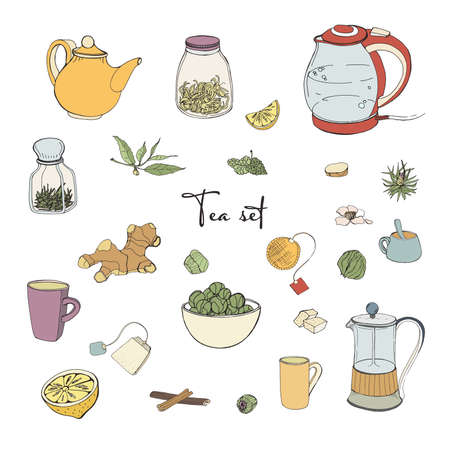 Set tea party objects. Collection with hand drawn kettle,jar,lemon,leaf,cup,ginger,cinnamon. vector colorful illustration. Illustration