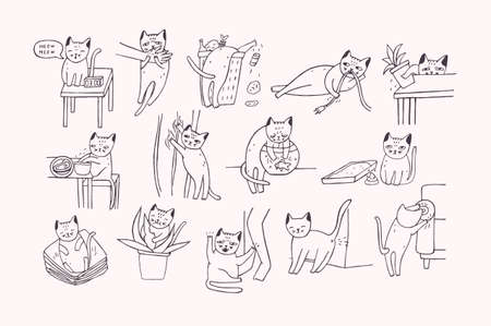 Set of problem with cat behavior. Kitten meowing, bites, scratches, marks sofa, sleeps on clothes, goes to the toilet, digs in the garbage, fishing. Cute hand drawn doodle illustration.