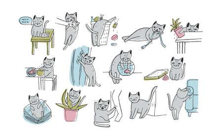 Set di problema con comportamenti gattino.