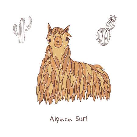 Alpaca suri hand drawn doodle illustration.