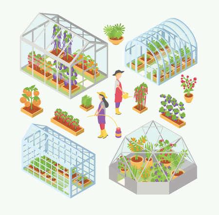 Set van 3d glazen kas, broeinest met zaailingen. Mensen waterplanten, bloemen, groenten in tuinbed, bloembed. Isometrische kleurrijke vectorillustraties