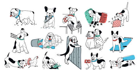 Set of problem with bad dog behaviour collection. Silly puppy barks, run off, goes to the toilet, digs in the garbage. Colorful doodle set. Cute vector hand drawn illustrations on white background.