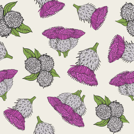 Burdock seamless texture with hand drawn buds. Colorful vector illustration pattern. 向量圖像