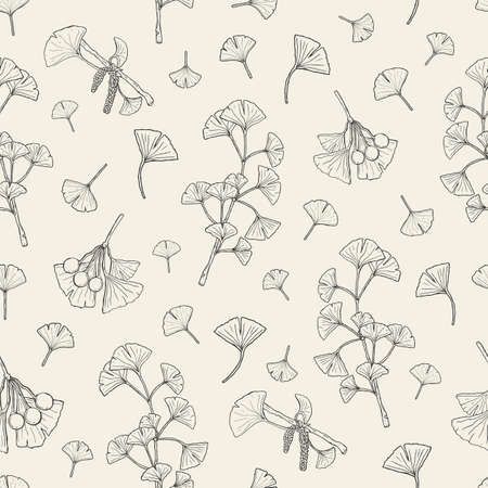 homeopathic: Seamless pattern with ginkgo biloba. medical, botanical plant background. Vector sketch hand drawn texture. Illustration