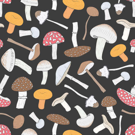 Different inedible mushrooms seamless pattern. Hand drawn fungi. Colorful vector illustration. pattern on black background.