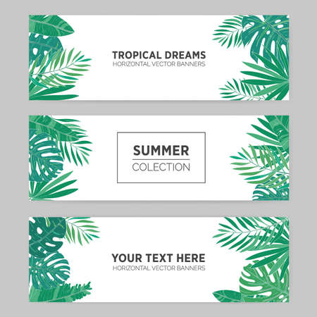 Set of summer horizontal banners with tropical leaves, monstera, banana, chamaedorea and other palms. Template for advertising production. Background with place for text.