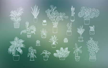 Different houseplants icons in line art style.