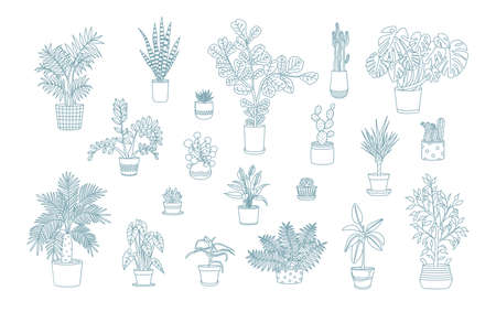 Different monochrome houseplants icons in line art style. Illustration