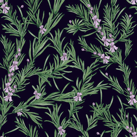 Natural seamless pattern with green rosemary plants and blooming flowers on black background. Wild herb hand drawn in vintage style. Vector illustration for wallpaper, textile print, backdrop