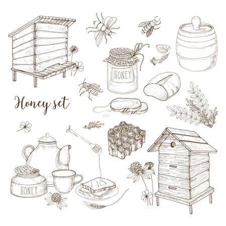 Honey production, beekeeping or apiculture set - honeycomb, man-made beehives, wooden dipper, bees, teapot hand drawn in retro style on white background. Monochrome vector illustration. Illustration
