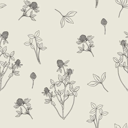 red clover: Beautiful floral seamless pattern with red clover on light background. Meadow flowers and leaves hand drawn in retro style. Vector black and white illustration.