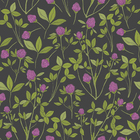 red clover: Botanical seamless pattern with red clover on dark background. Wild herbaceous plant with pink flowers, green stems and trifoliate leaves hand drawn in antique style. Natural vector illustration
