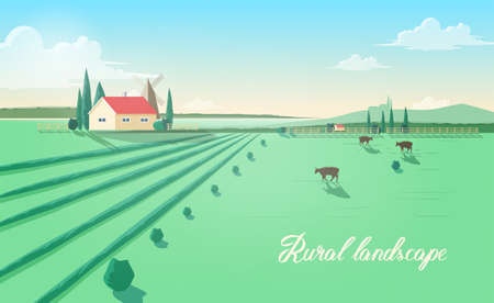 Spectacular rural landscape with farm building, windmill, cows grazing in green field against beautiful sky on background. Beautiful pastoral scenery with domestic cattle. Colored vector illustration. Çizim