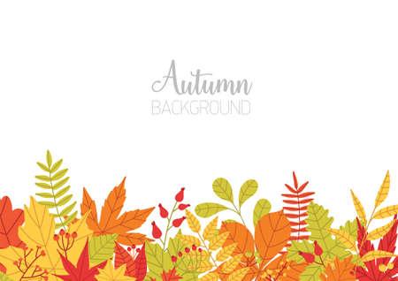 Horizontale banner met verschillende kleurrijke herfst boom laat onderaan rand en plaats voor tekst op witte achtergrond. Seizoensachtergrond met felgekleurde botanische elementen. Natuurlijke vectorillustratie