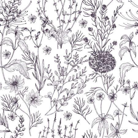 Antigüedad floral de patrones sin fisuras con flores silvestres, plantas con flores y plantas herbáceas mano dibujada en colores blanco y negro con líneas de contorno. Ilustración de vector monocromo en estilo vintage. Ilustración de vector