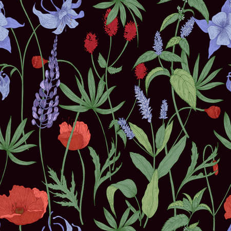 Elegant botanical seamless pattern with wild flowers and herbs on black background - field poppies, lupine, great burnet, granny s bonnet, peppermint. Floral vector illustration in antique style.