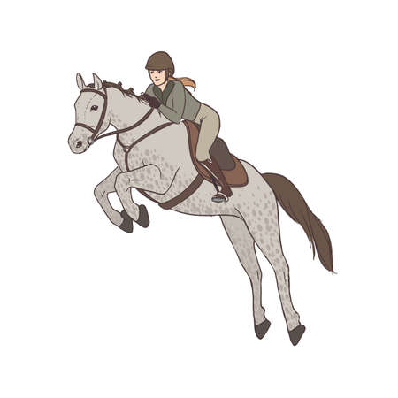 Beautiful woman wearing breeches, jacket and helmet riding horse. Professional female horseback rider, equestrienne. Cartoon character isolated on white background. Colorful vector illustration. Stock Photo