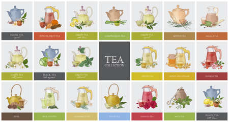 Big collection of labels or tags with various types of tea - black, green, rooibos, masala, mate, puer. Set of hand drawn tasty flavored drinks, teapots, cups and spices. Colorful vector illustration. Иллюстрация