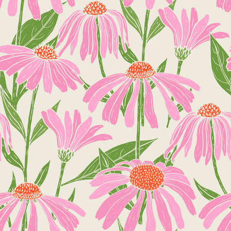 Botanical seamless pattern with gorgeous echinacea flowers, stems and leaves on light background. Backdrop with pink flowering plants hand drawn in vintage style. Natural vector illustration.