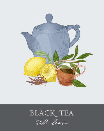 Blue teapot, transparent glass cup, tea leaves, flowers and fresh lemon fruit on gray background. Delicious citrus drink. Colored vector illustration hand drawn in retro style for tag, advertisement.