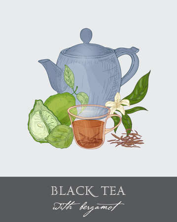 Colorful drawing of blue teapot, cup, tea leaves, flowers, whole and half cut green bergamot fruit on gray background. Tasty traditional beverage. Vector illustration hand drawn in antique style