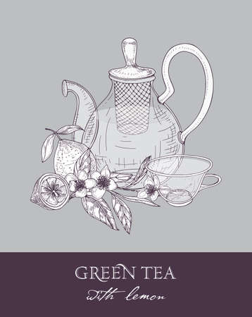 Monochrome sketch of teapot with strainer, cup, green tea leaves, flowers and juicy lemon fruit on gray background. Delicious flavored beverage. Vector illustration hand drawn with contour lines
