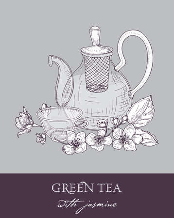 Monochrome drawing of teapot, cup of green tea, jasmine leaves and flowers on gray background. Delicious flavored drink. Vector illustration hand drawn with contour lines in elegant vintage style