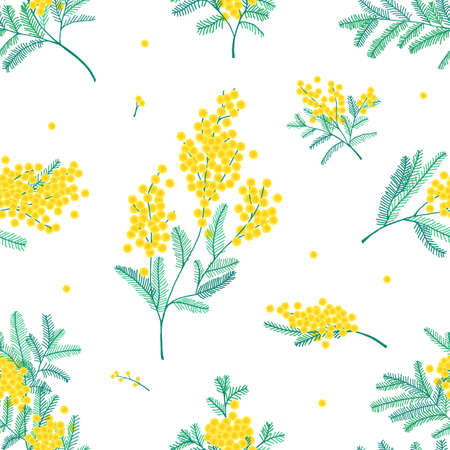 Botanical seamless pattern with yellow mimosa flowers and leaves on white background. Backdrop with elegant flowering plants. Natural vector illustration for textile print, wallpaper, wrapping paper