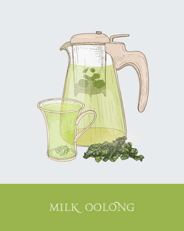 Transparent teapot or jug with strainer and steeping milk oolong vector illustration Ilustração