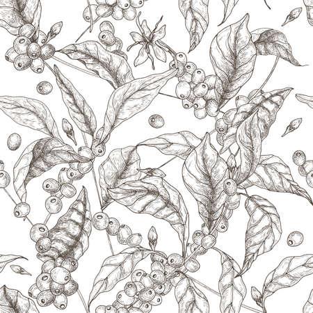 Beau modèle sans couture avec des branches de café ou de caféier, des feuilles, des fleurs épanouies et des fruits sur fond blanc. Illustration vectorielle de contour dans le style antique pour l'impression de tissu, papier peint.