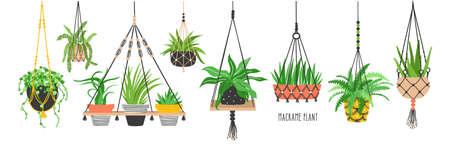 Conjunto de perchas de macramé para plantas que crecen en macetas. Paquete de macetas colgantes hechas de cordón de algodón, hermosas decoraciones caseras hechas a mano aisladas sobre fondo blanco. Ilustración de vector plano de dibujos animados Ilustración de vector