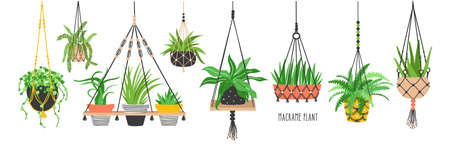 Set of macrame hangers for plants growing in pots. Bundle of hanging planters made of cotton cord, beautiful handmade home decorations isolated on white background. Cartoon flat vector illustration. Ilustração