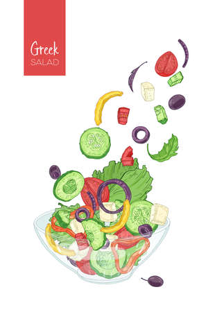 Colorful drawing of greek salad and its ingredients.