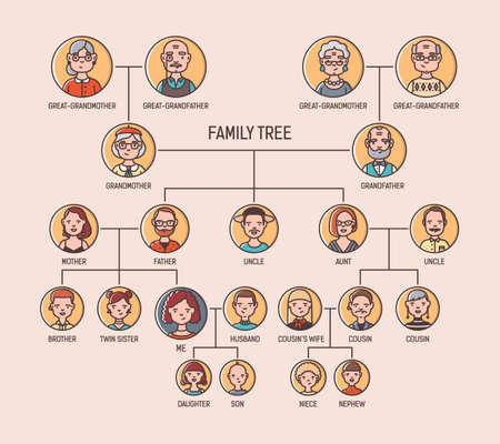 Ahnendiagrammvorlage mit Porträts von Männern und Frauen in runden Rahmen. Visualisierung von Verbindungen zwischen Vorfahren und Nachkommen, Familienmitgliedern. Moderne bunte vektorabbildung. Vektorgrafik