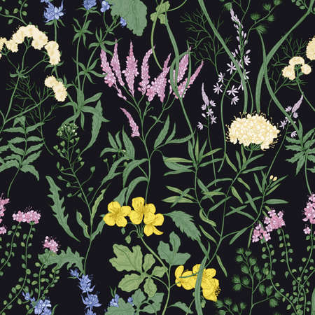 Elegant seamless pattern with trendy wild flowers and herbaceous flowering plants on black background. Beautiful floral backdrop. Colorful vector illustration for textile print, wallpaper.