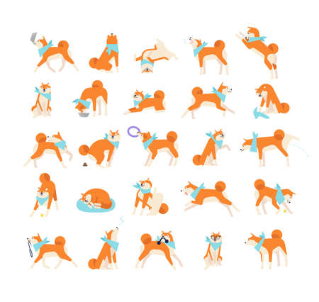Collection of dog performing everyday activities on white background. Bundle of cute Japanese Shiba Inu pet eating, sleeping, playing, barking, howling. Flat cartoon vector illustration.
