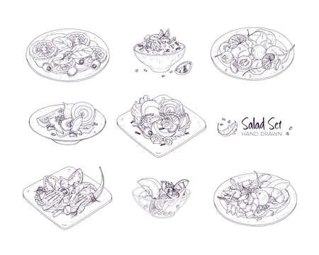 Ensemble de différentes salades servies dans des assiettes et dans des bols dessinés à la main avec des lignes de contour sur fond blanc - Taboulé, Nicoise, César, Waldorf, fruits. Illustration vectorielle réaliste monochrome. Vecteurs