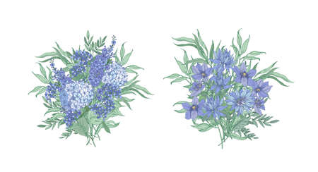 Set of elegant bouquets made of beautiful blue wild blooming flowers and flowering herbs isolated on white background. Bundle of floral decorations or design elements. Botanical vector illustration.