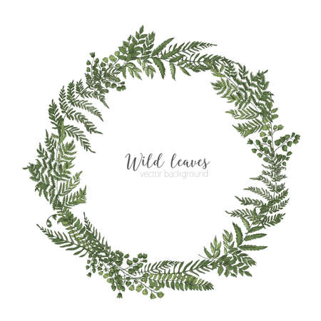 Round frame, border or circular wreath made of beautiful ferns, wild herbs or green herbaceous plants isolated on white background. Herbal backdrop or border. Elegant realistic vector illustration.