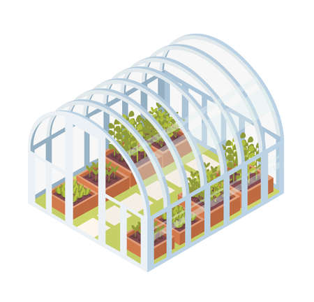 Green seedlings, sprouts or plants growing inside glass greenhouse. Isometric dome glasshouse with garden beds for home gardening isolated on white background. Vector illustration in flat style.