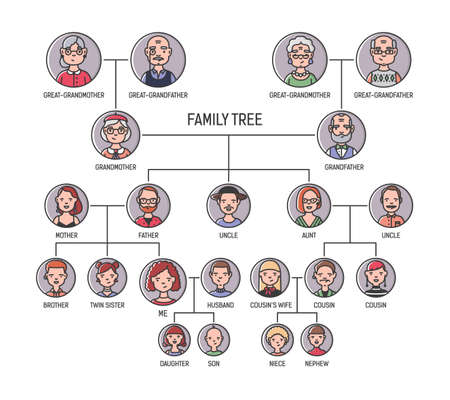Family tree, pedigree or ancestry chart template. Cute mens and womens portraits in circular frames connected by lines. Links between relatives. Colorful vector illustration in lineart style. Çizim