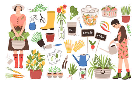 Collection of two female gardeners and gardening tools - watering can, fruit baskets, seeds, pruner, trowel, rubber boots, gloves, seedlings, potted plants. Cartoon vector illustration in flat style.