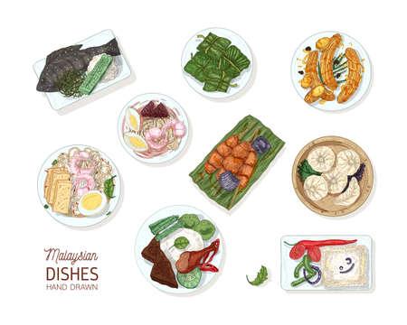 Raccolta di gustosi pasti della cucina malese. Fascio di deliziosi piatti piccanti del ristorante asiatico che si trovano su piastre isolate su priorità bassa bianca. Illustrazione vettoriale disegnato a mano realistico colorato.