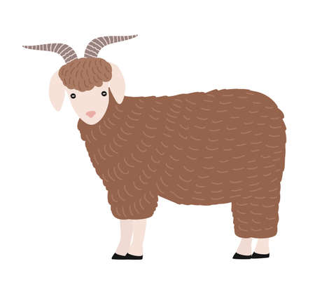 Adorable goat isolated on white background. Cute lovely cartoon domestic barnyard animal with horns, country farm livestock. Colored childish hand drawn vector illustration in simple trendy style. Ilustração