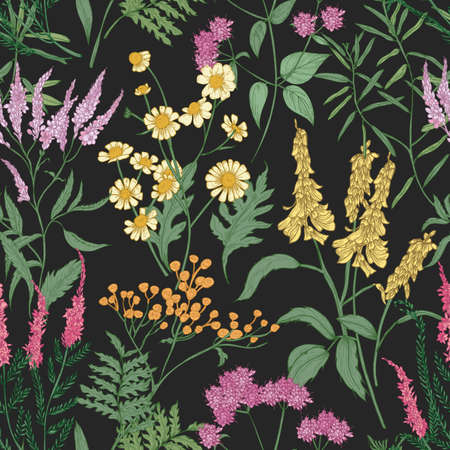 Romantic seamless pattern with tender wild blooming flowers and meadow flowering herbs used in floristry on black background. Floral hand drawn vector illustration for backdrop, wrapping paper