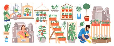 Urban gardening collection. People living in city cultivating plants, growing crops or vegetables in pots at home or on balcony isolated on white background. Colorful hand drawn vector illustration Ilustração