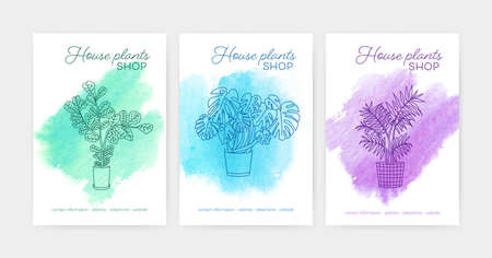 Bundle of vertical poster or flyer templates with indoor plants growing in pots drawn with contour lines against watercolor stains on background. Vector illustration for houseplant shop advertisement Illustration