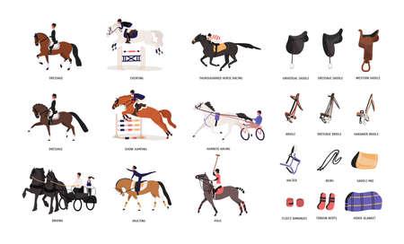 Raccolta di varie andature del cavallo e strumenti per passeggiate a cavallo o equitazione isolati su sfondo bianco. Bellissimo sport competitivo. Illustrazione vettoriale colorato in stile cartone animato piatto