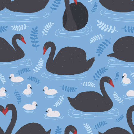 Seamless pattern with flock of black swans and cygnets floating in water, pond or lake. Backdrop with beautiful wild bird or waterfowl. Flat colored cartoon vector illustration for wrapping paper